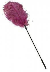 Ostrich Feather pink