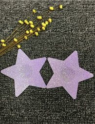 Star shaped sequins Silver Nipple Cover